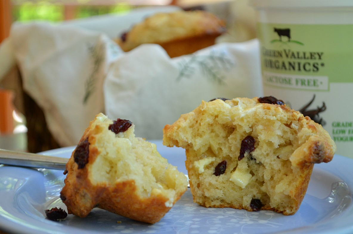 ... Baking » Big Beautiful Muffins with Cranberries and White Chocolate