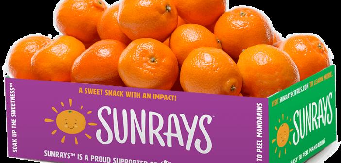 Sunrays Box